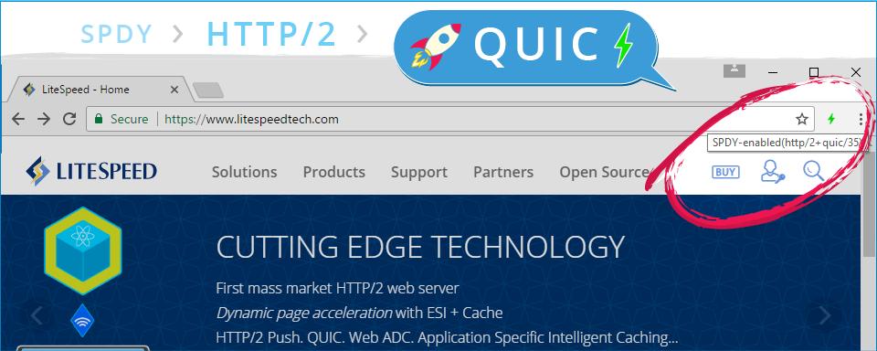 litespeed áp dụng QUIC trên WordPress Hosting
