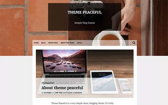 10 theme WordPress miễn phí ĐẸP và TỐT nhất 2018 6