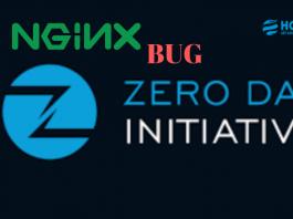 Nginx bug zero day initiactive