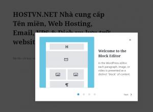Welcome Guide - wordpress version 5.4