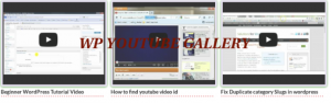 WP Youtube Gallery - create YouTube video library for WordPress