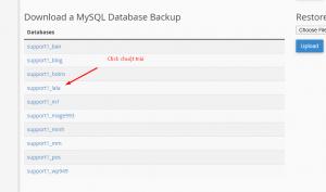 Screenshot_29 - WordPress data backup