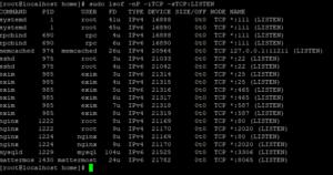 Screenshot_5 - kiểm tra Port đang sử dụng