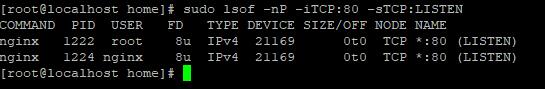 Screenshot_6 - kiểm tra Port đang sử dụng