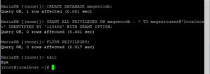 Screenshot_121 - Cài đặt Magento với Nginx