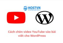 insert-youtube-video-in-wordpress