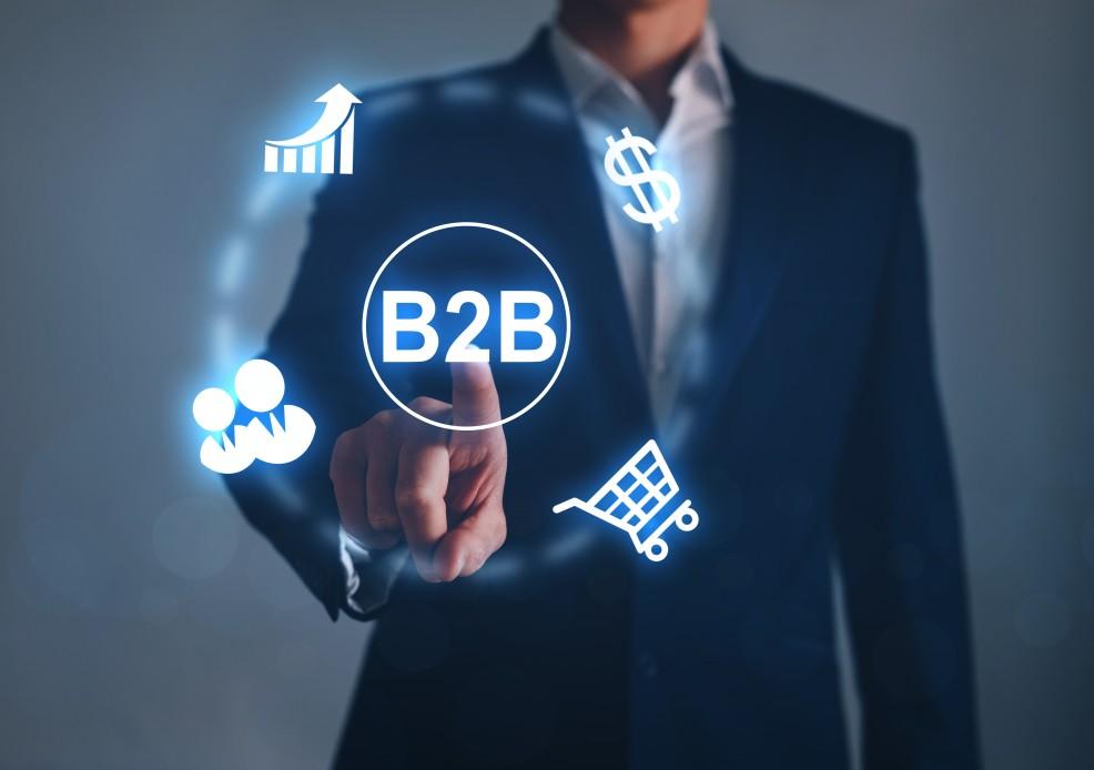 thương mại điện tử B2B