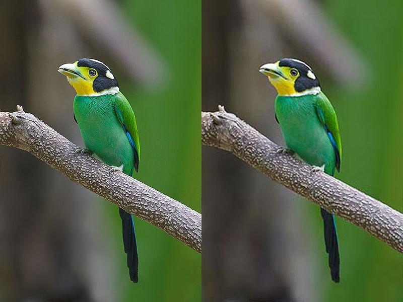 Nén hình ảnh là quá trình giảm kích thước tệp của hình ảnh